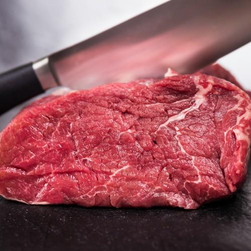 fillet beef piece